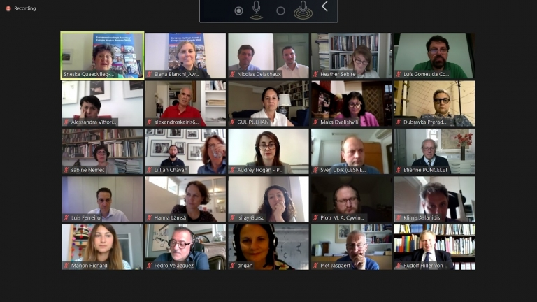 Laureates of the European Heritage Awards / Europa Nostra Awards 2020 celebrated with online meeting